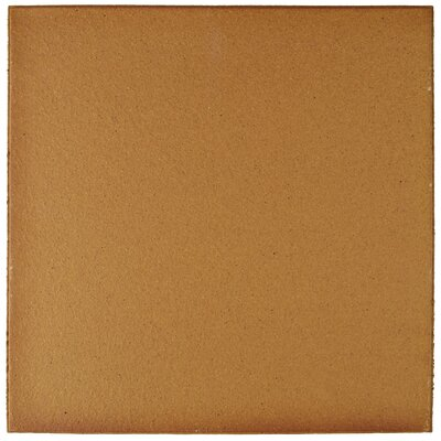 Shale 9.63 x 9.63 Ceramic Field Tile in Brown