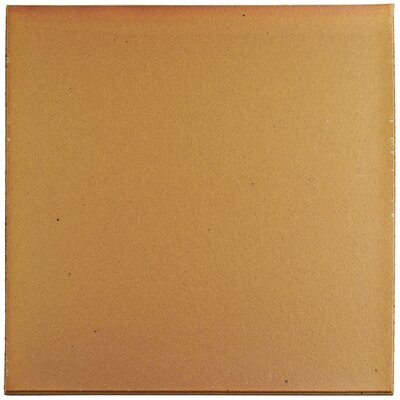 Shale 12.75 x 12.75 Ceramic Field Tile in Brown