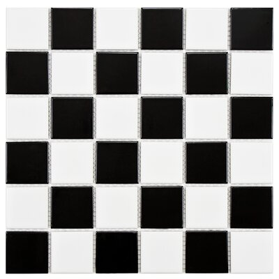Arctic 2 x 2 Porcelain Mosaic Tile in Black/White