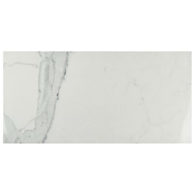 Macedonia 14.63 x 29.5 Porcelain Field Tile in Marble White