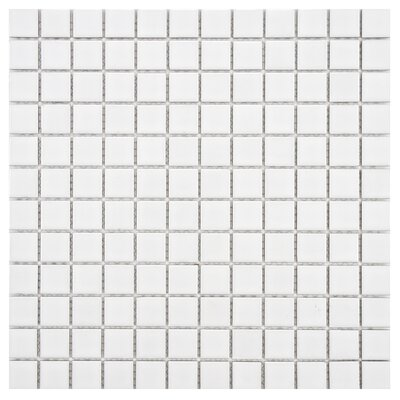 Arctic 0.86 x 0.86 Porcelain Mosaic Tile in White