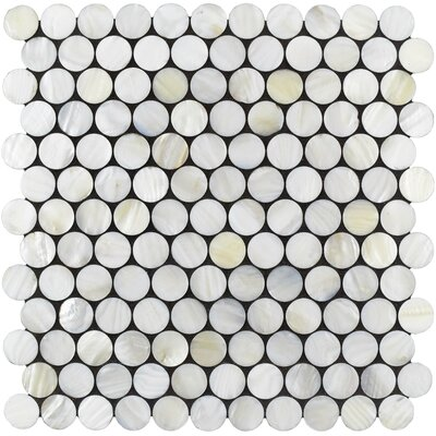Shore Penny 0.98 x 0.98 Seashell Mosaic Tile in White
