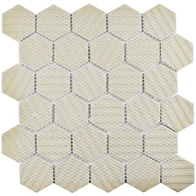 Retro Hexagon 2 x 2 HePorcelain Mosaic Tile in White