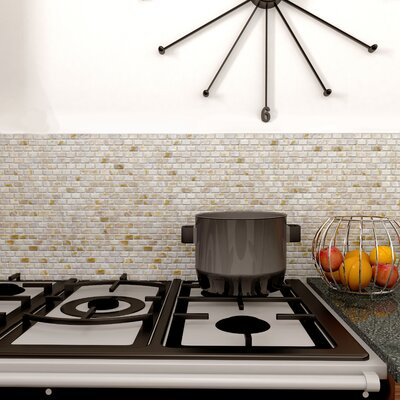 Shore 1 x 1 Seashell Mosaic Tile in Textured Natural shell