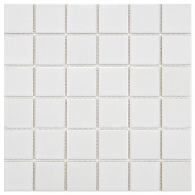 Arctic 2 x 2 Porcelain Mosaic Tile in White