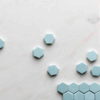 Retro Hexagon 0.875 x 0.875 Porcelain Mosaic Tile in Matte Light Blue