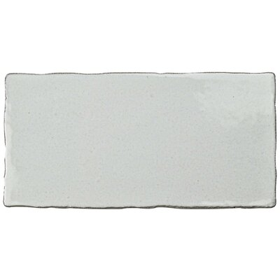 Antiqua 3 x 6 Ceramic Subway Tile in Special Milk