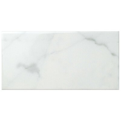 Karra Carrara 3 x 6 Ceramic Subway Tile in Glossy White/Gray