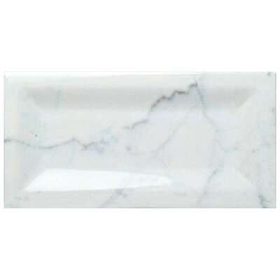 Karra Carrara 3 x 6 Ceramic Subway Tile in Glossy Inmetro White/Gray