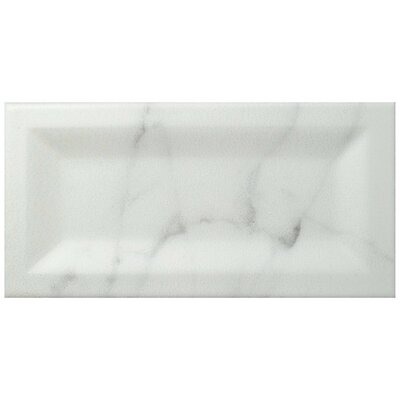 Karra Carrara 3 x 6 Ceramic Subway Tile in Matte Inmetro White/Gray