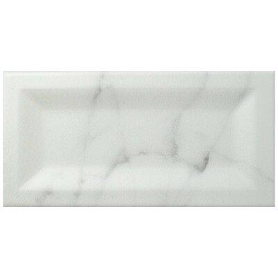 Karra Carrara 3 x 6 Ceramic Subway Tile in Matte Inmetro White/Gray