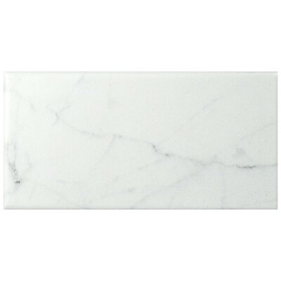 Karra Carrara 3 x 6 Ceramic Subway Tile in Matte White/Gray