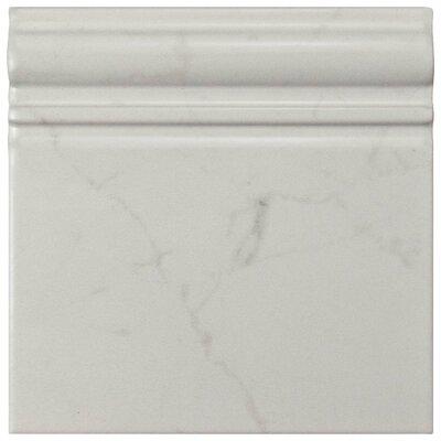 Karra Carrara 6 x 6 Ceramic Counter Rail Tile Trim in White/Gray