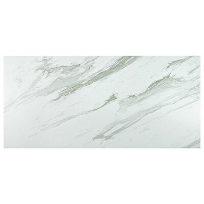 Marbre Carrara 12.88 x 25.63 Porcelain Field Tile in Gray/White
