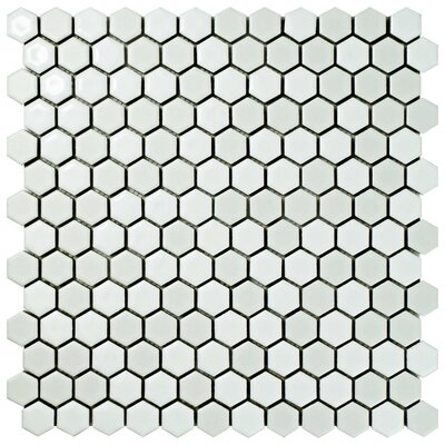 Astraea Hex 0.9 x 1.01 Porcelain Mosaic Tile in White