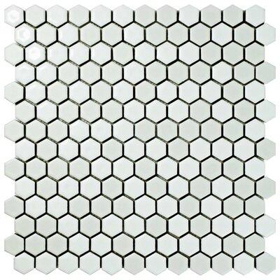 Astraea Hex 0.9 x 1.01 Porcelain Mosaic Tile in White