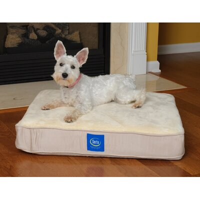 "True Response Dog Pillow with Memory Foam Size: Medium (36"" L x 27"" W)"