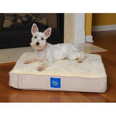 "True Response Dog Pillow with Memory Foam Size: Medium (36"" L x 27"" W)"
