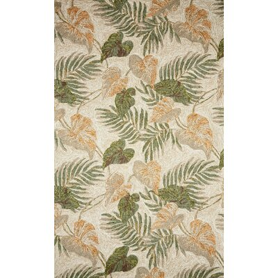 Demirhan Tropical Leaf Outdoor Rug Rug Size: Rectangle 83 x 116