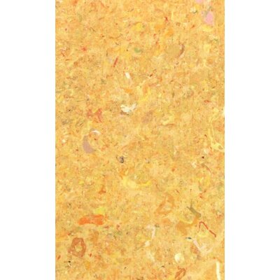 Chacko Yellow Indoor/ Ourdoor Indoor/Outdoor Area Rug Rug Size: 2 x 410
