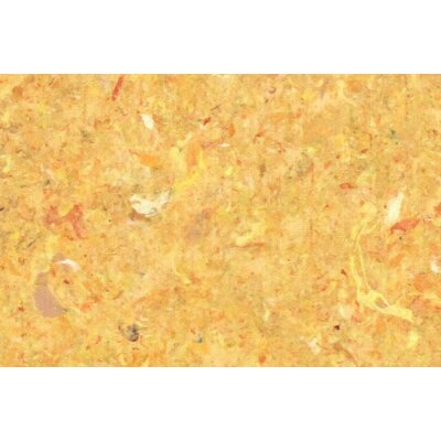 Chacko Yellow Indoor/ Ourdoor Indoor/Outdoor Area Rug Rug Size: 410 x 76