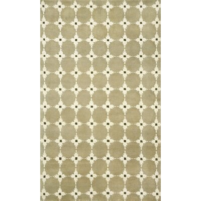 Palermo Brown Squares Neutral Area Rug Rug Size: 36 x 56