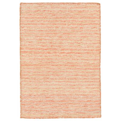 Blueridge Hand-Woven Orange Indoor/Outdoor Area Rug Rug Size: 76 x 96