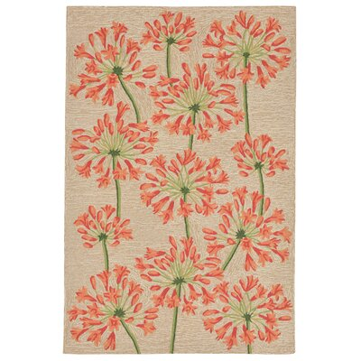 Dazey Lily Hand-Tufted Beige/Red Indoor/Outdoor Area Rug Rug Size: 36 x 56
