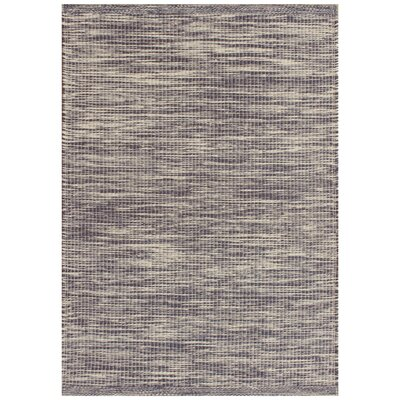 Boerner Hand-Woven Navy Indoor/Outdoor Area Rug Rug Size: 36 x 56
