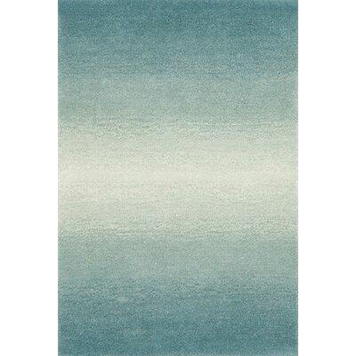 Belding Aqua Horizon Area Rug Rug Size: 2 x 3