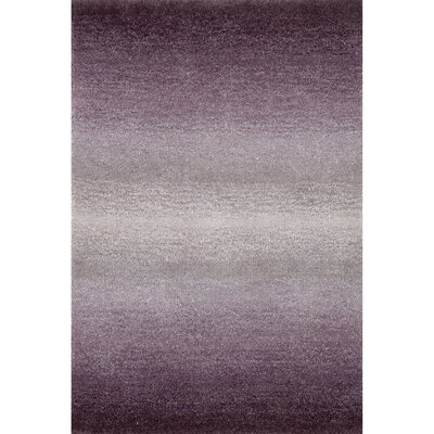Belding Purple Horizon Area Rug Rug Size: 2 x 3