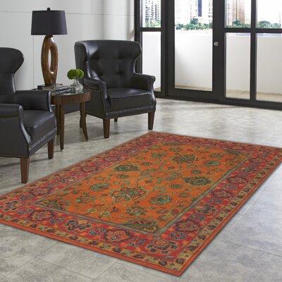 Petra Mandarin Agra Rug Rug Size: 9 x 12