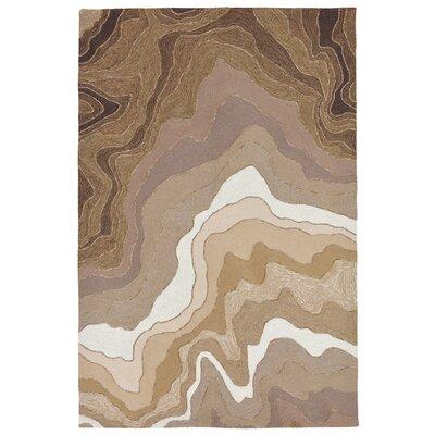 Aline Handmade Khaki Indoor/Outdoor Area Rug Rug Size: 5 x 76