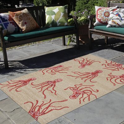 Northfield Octopus Hand-Tufted Orange/Beige Indoor/Outdoor Area Rug Rug Size: Runner 2 x 8