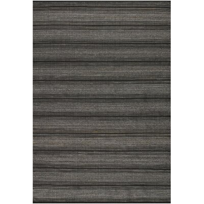 Cambria Hand Woven Black Indoor/Outdoor Area Rug Rug Size: Rectangle 36 x 56