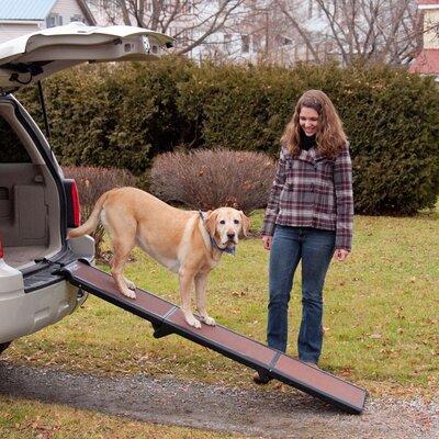 Travel-Lite Tri-Fold 71 Pet Ramp
