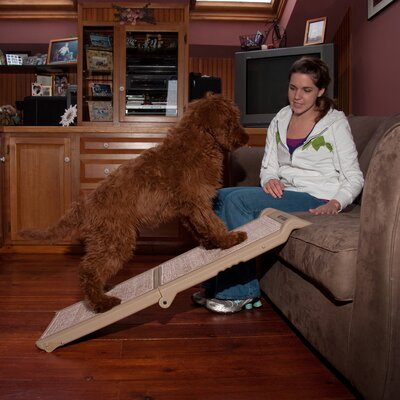 Indoor Bi-Fold Half 42 Pet Ramp