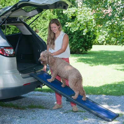 Travel Lite Bi-Fold Pet Ramp