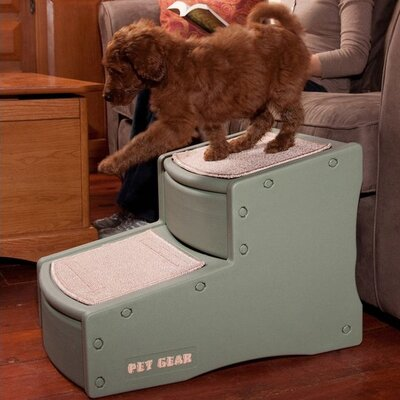Easy Step II 2 Step Pet Stair Color: Sage