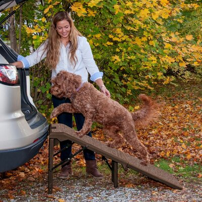 Free Standing Extra Wide Carpeted 55 Pet Ramp