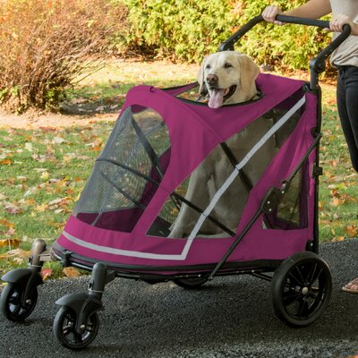 Expedition No Zip Standard Stroller Color: Purple/Black
