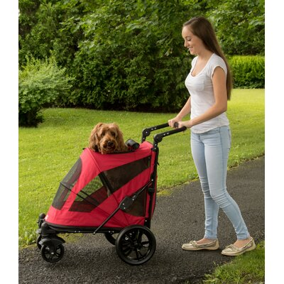 Excursion Standard Stroller Color: Candy Red
