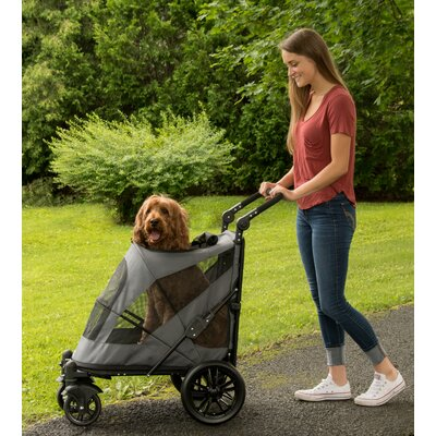 Excursion Standard Stroller Color: Dark Platinum