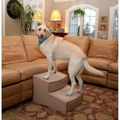 Easy Steps II Extra Wide 2 Step Pet Stair Color: Tan