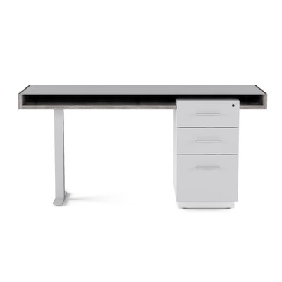 Pedestal Desk Filing Cabinet Duo Product Picture 1479