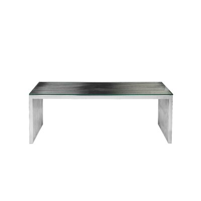 Hoang Rectangle Coffee Table Color: Silver