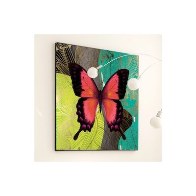 Metamorphosis Modern Butterfly Framed Graphic Art Size: 48