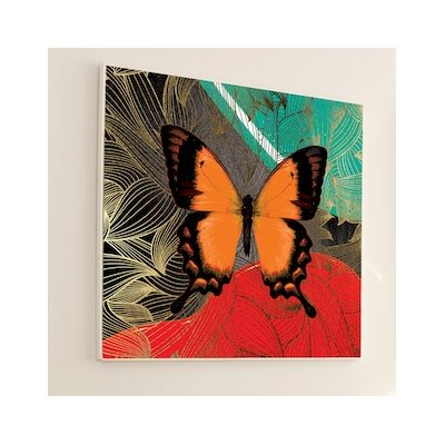 "Metamorphosis Kindred Graphic Art Size: 48"" H x 48"" W, Frame Color: White Matte 3M3WH"