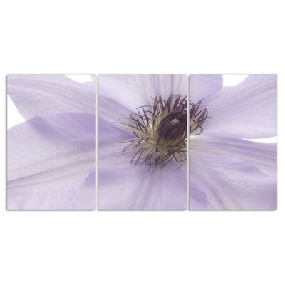 'Purple Flower Triptych' 3 Piece Photographic Print Wall Plaque Set