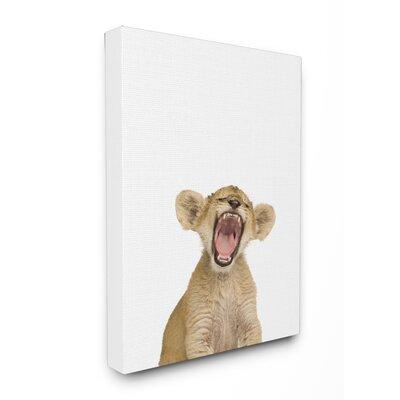 Baby Lion Cub Studio Photo Canvas Art brp-1826_cn_16x20
